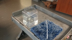 coulomb force on water1